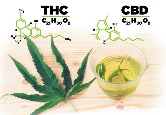 Skillnad THC och CBD